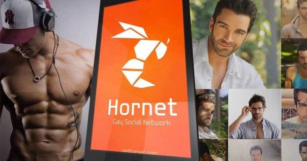 app-hornet.jpg